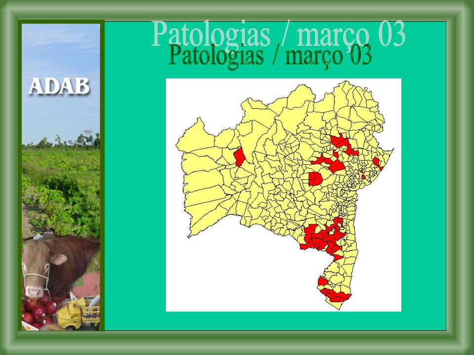 Patologias / março 03
