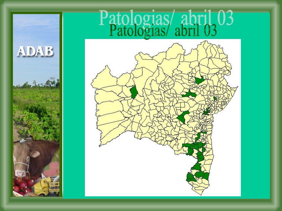 Patologias/ abril 03