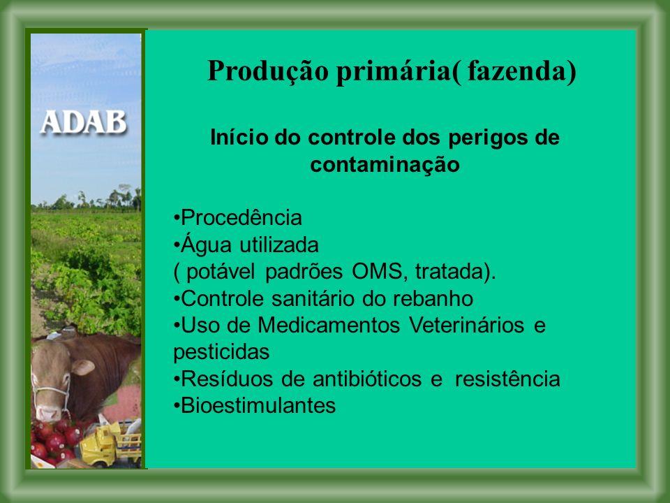 Produção primária( fazenda)