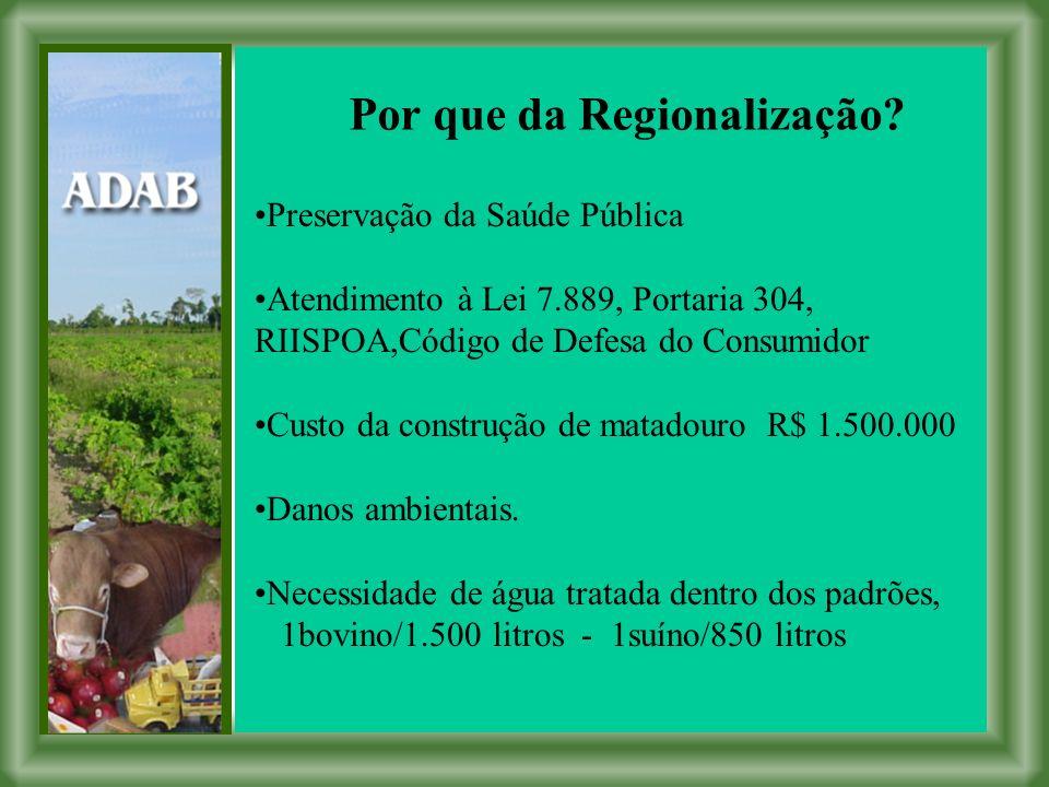 Por que da Regionalização