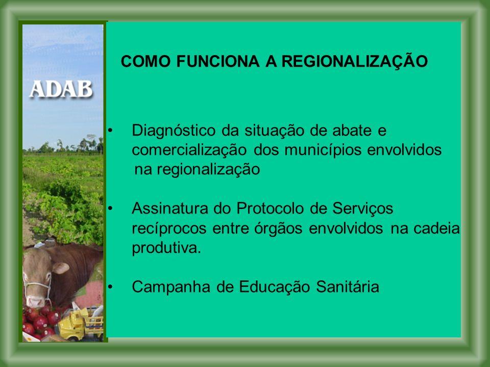 COMO FUNCIONA A REGIONALIZAÇÃO