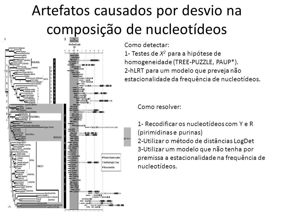 Artefatos causados por desvio na composição de nucleotídeos