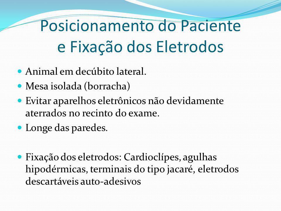 Posicionamento do Paciente e Fixação dos Eletrodos