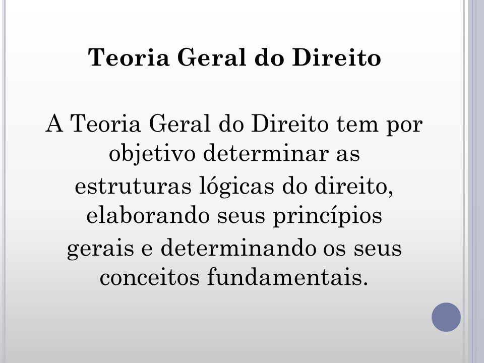 Teoria Geral do Direito A Teoria Geral do Direito tem por objetivo determinar as estruturas lógicas do direito, elaborando seus princípios gerais e determinando os seus conceitos fundamentais.