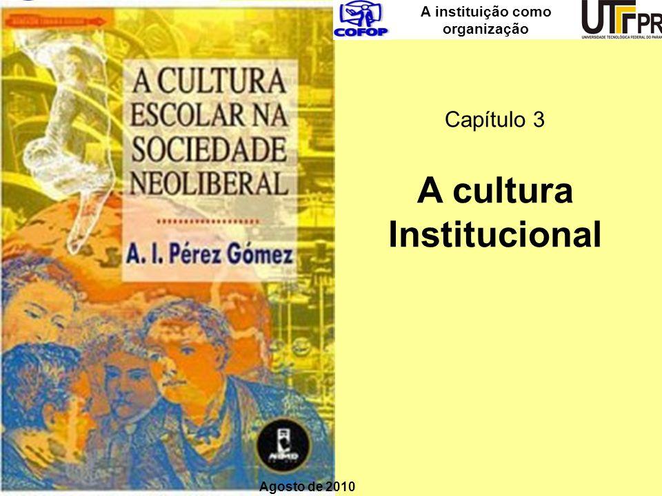 A instituição como organização A cultura Institucional