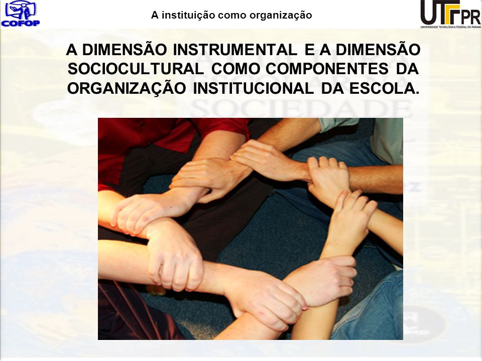 A DIMENSÃO INSTRUMENTAL E A DIMENSÃO SOCIOCULTURAL COMO COMPONENTES DA ORGANIZAÇÃO INSTITUCIONAL DA ESCOLA.
