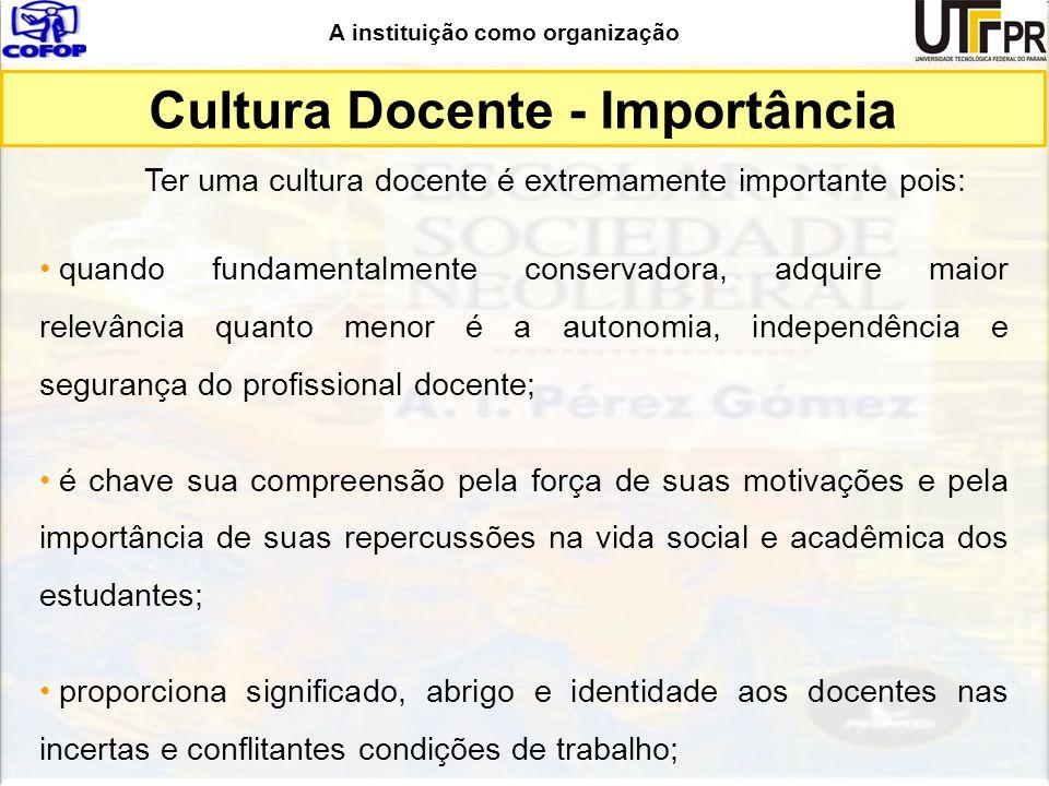 Cultura Docente - Importância