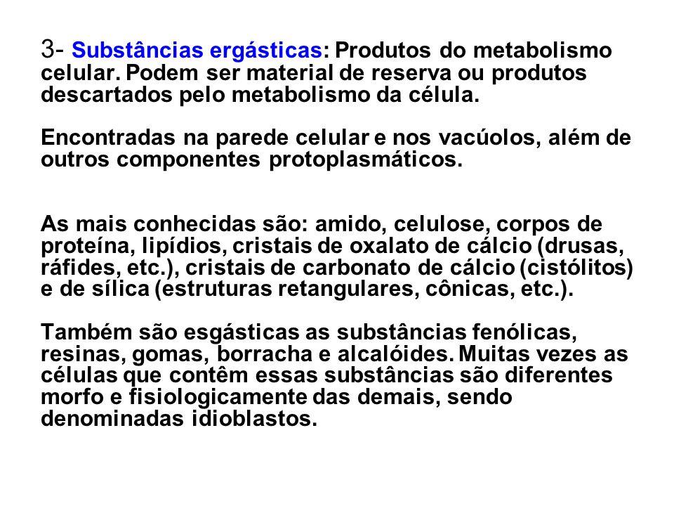3- Substâncias ergásticas: Produtos do metabolismo celular
