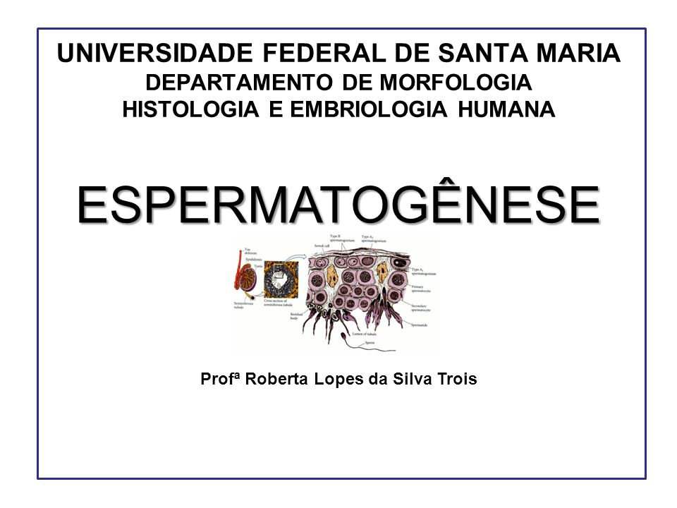 Profª Roberta Lopes da Silva Trois