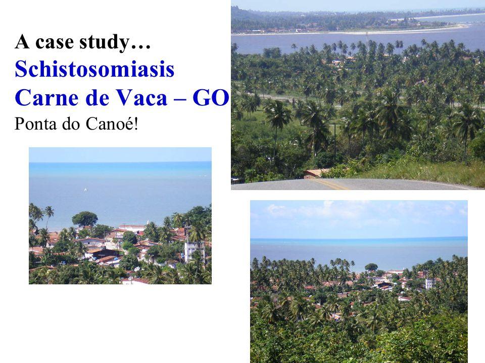 A case study… Schistosomiasis Carne de Vaca – GO Ponta do Canoé!