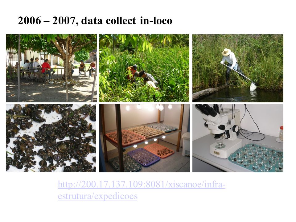 2006 – 2007, data collect in-loco http://200.17.137.109:8081/xiscanoe/infra-estrutura/expedicoes