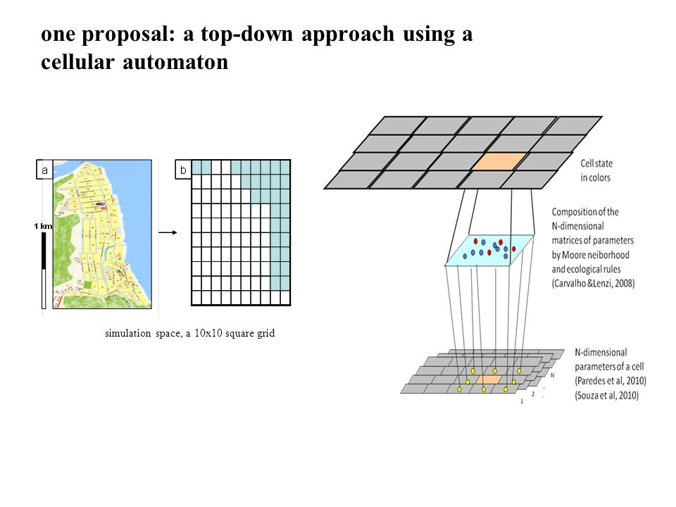 one proposal: a top-down approach using a cellular automaton