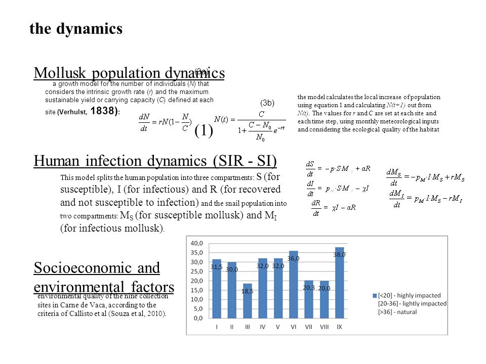 the dynamics Mollusk population dynamics (1)