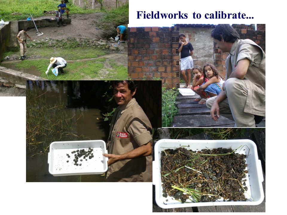 Fieldworks to calibrate...