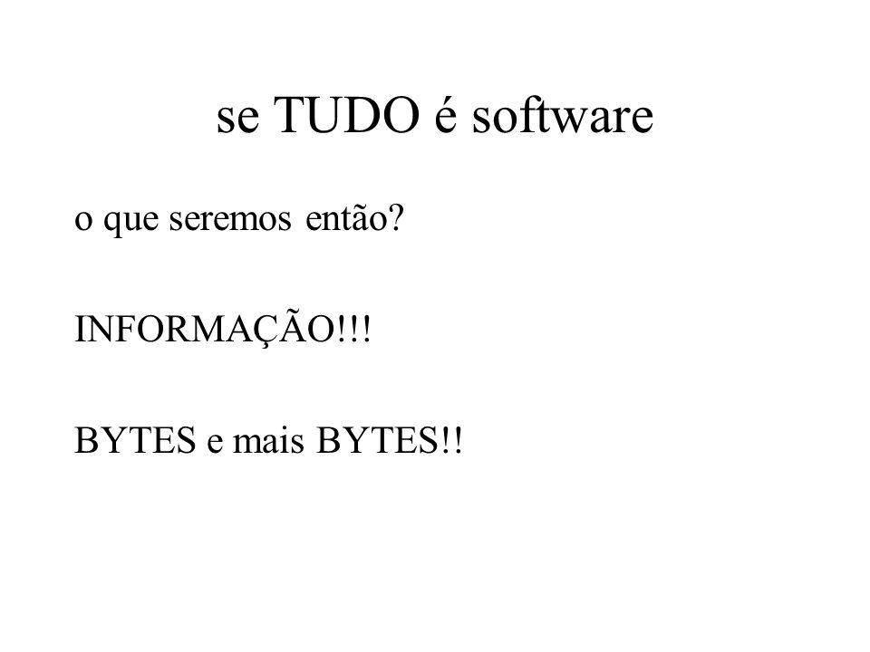 se TUDO é software o que seremos então INFORMAÇÃO!!! BYTES e mais BYTES!!