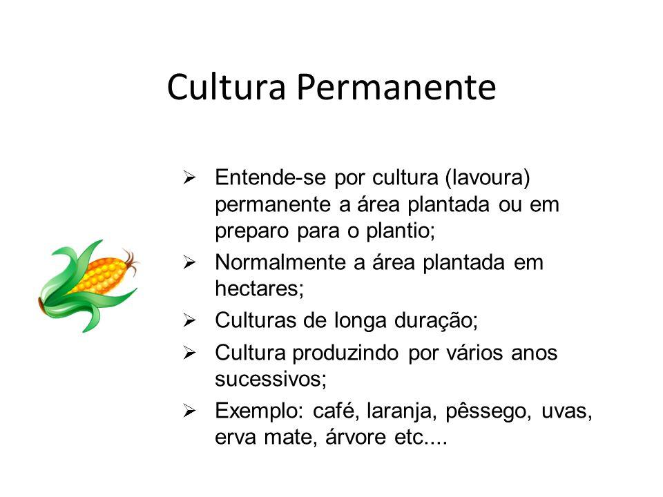 Cultura Permanente Entende-se por cultura (lavoura) permanente a área plantada ou em preparo para o plantio;