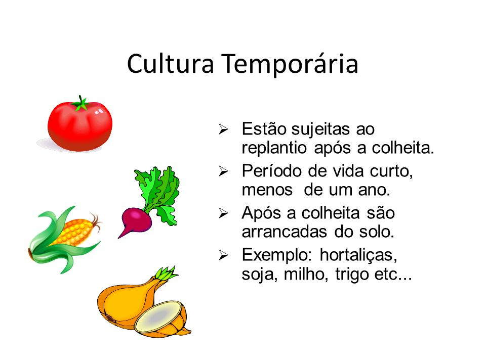 Cultura Temporária Estão sujeitas ao replantio após a colheita.