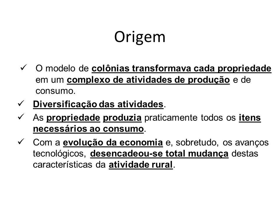 Origem O modelo de colônias transformava cada propriedade em um complexo de atividades de produção e de consumo.