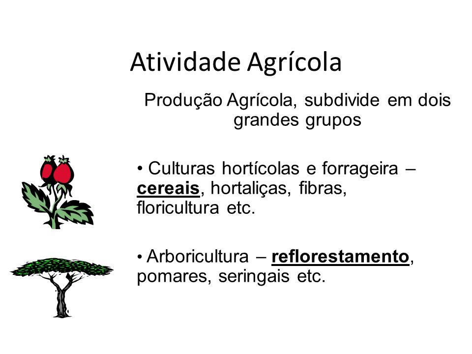 Produção Agrícola, subdivide em dois grandes grupos