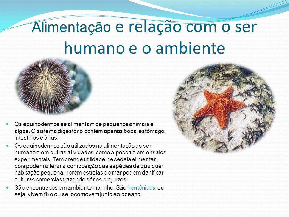 Alimentação e relação com o ser humano e o ambiente