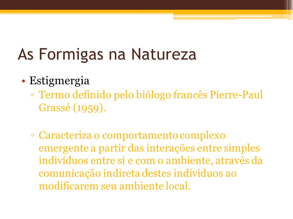 As Formigas na Natureza