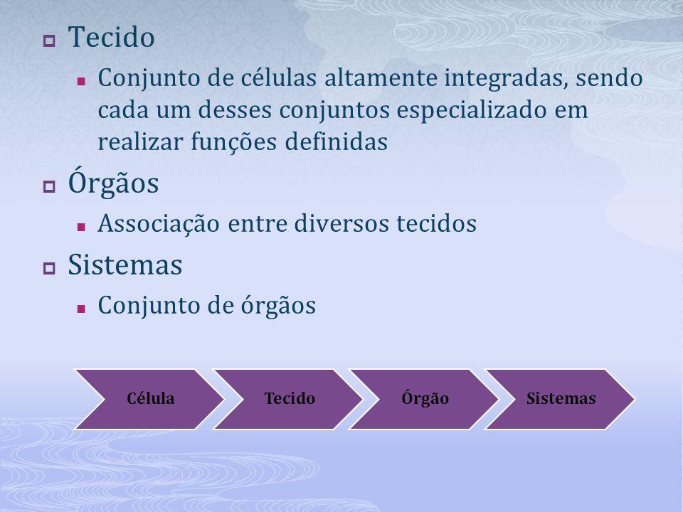 Tecido Órgãos Sistemas
