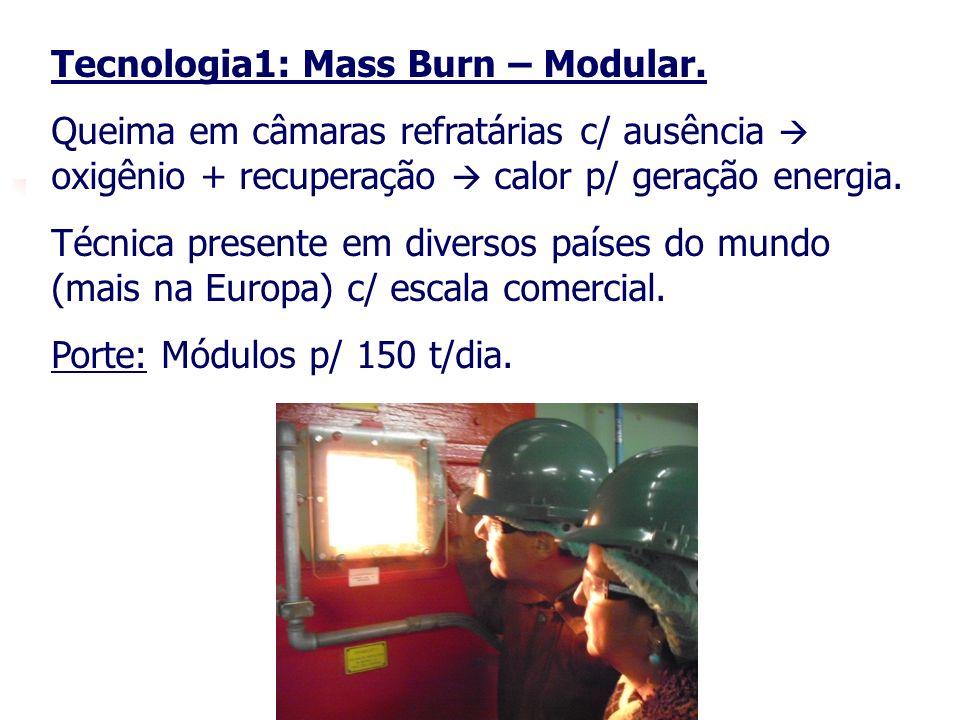 Tecnologia1: Mass Burn – Modular.