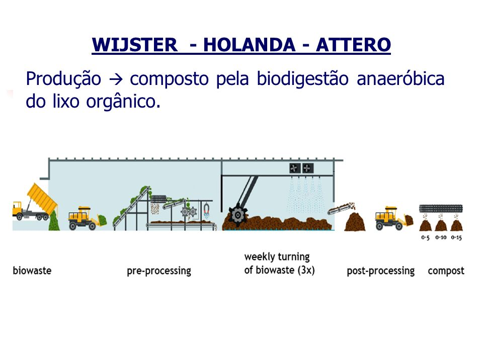 WIJSTER - HOLANDA - ATTERO