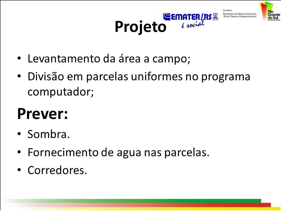 Projeto Prever: Levantamento da área a campo;