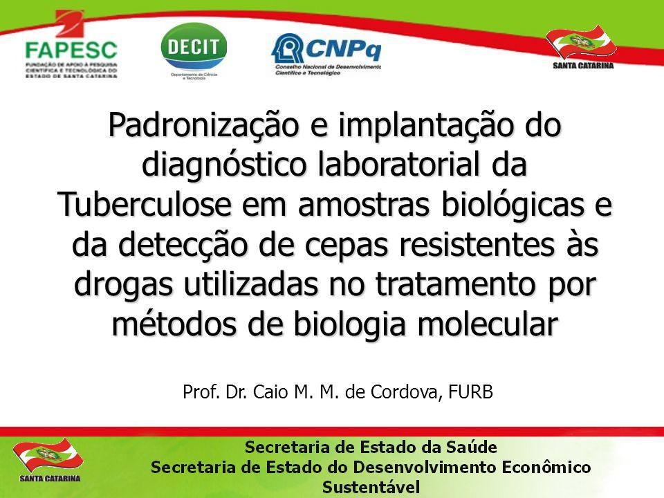 Prof. Dr. Caio M. M. de Cordova, FURB