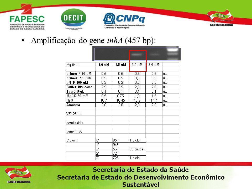 Amplificação do gene inhA (457 bp):