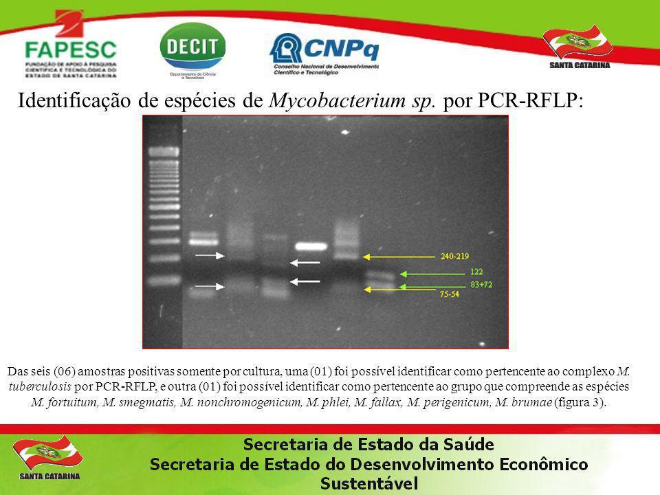 Identificação de espécies de Mycobacterium sp. por PCR-RFLP: