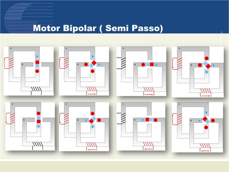Motor Bipolar ( Semi Passo)