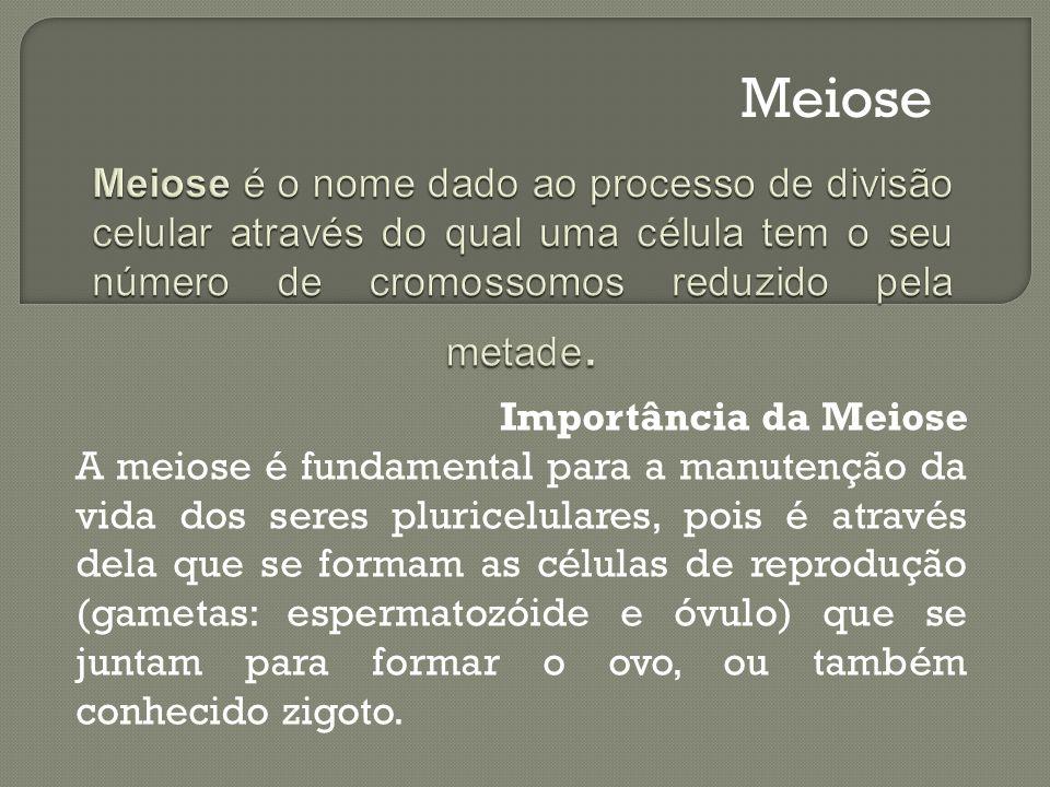 Meiose Meiose é o nome dado ao processo de divisão celular através do qual uma célula tem o seu número de cromossomos reduzido pela metade.