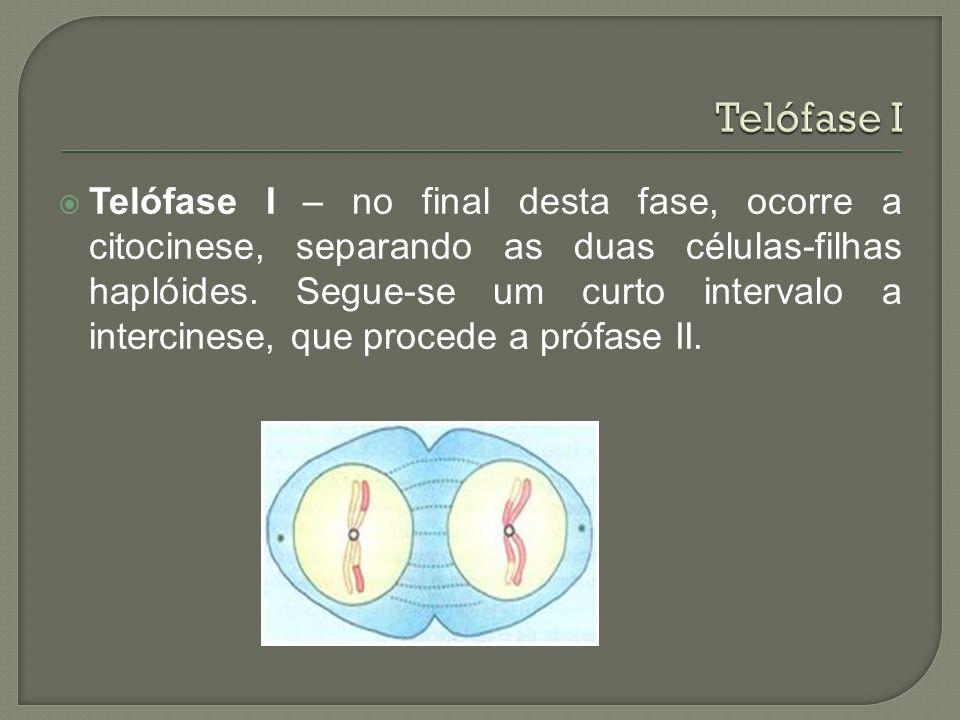 Telófase I