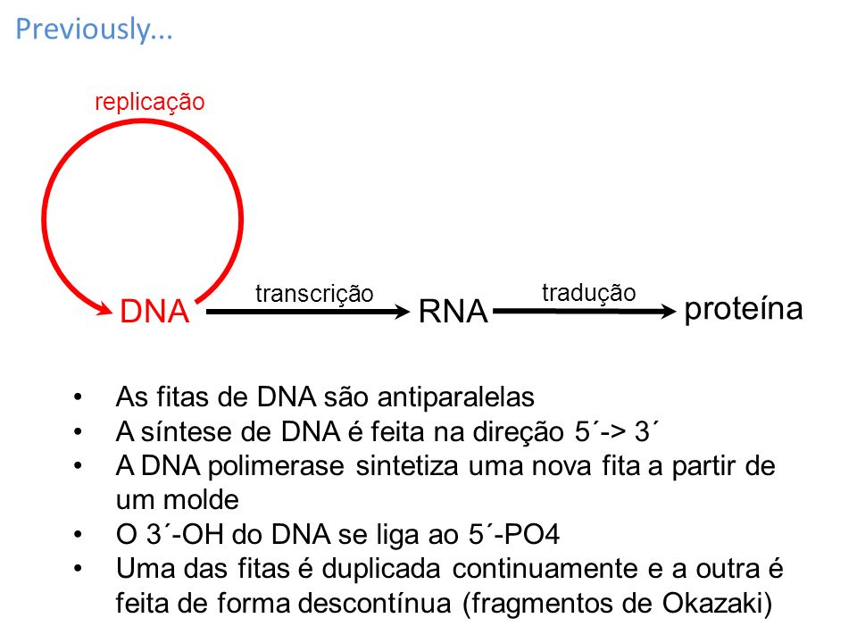 Previously... DNA RNA proteína As fitas de DNA são antiparalelas