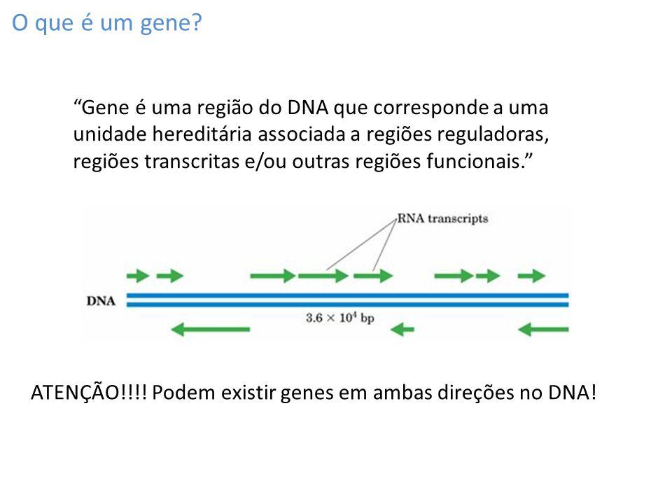 O que é um gene