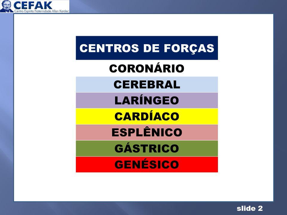 CENTROS DE FORÇAS CORONÁRIO CEREBRAL LARÍNGEO CARDÍACO ESPLÊNICO GÁSTRICO GENÉSICO