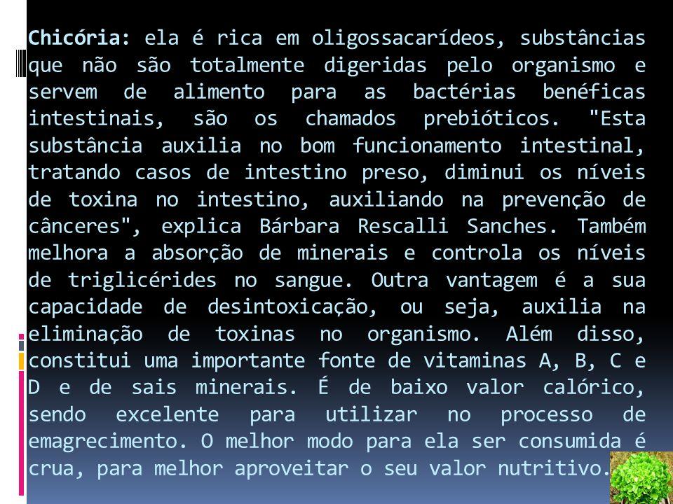 Chicória: ela é rica em oligossacarídeos, substâncias que não são totalmente digeridas pelo organismo e servem de alimento para as bactérias benéficas intestinais, são os chamados prebióticos.