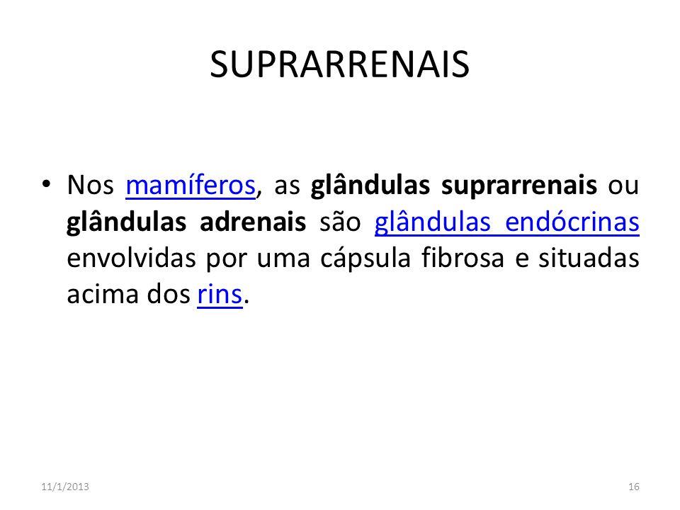 SUPRARRENAIS