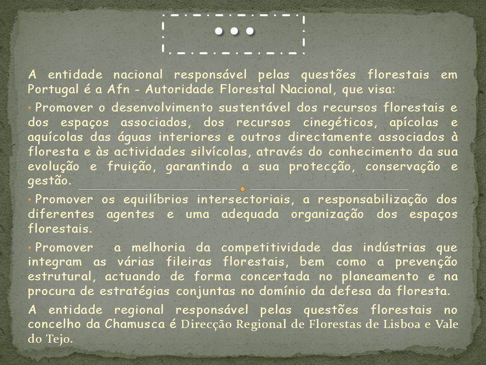 … A entidade nacional responsável pelas questões florestais em Portugal é a Afn - Autoridade Florestal Nacional, que visa: