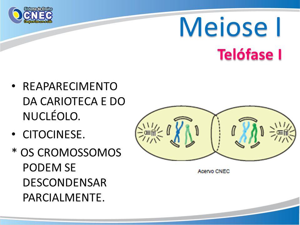Meiose I Telófase I REAPARECIMENTO DA CARIOTECA E DO NUCLÉOLO.