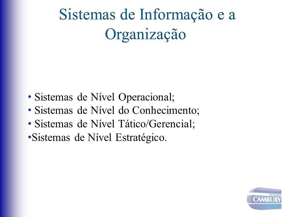 Sistemas de Informação e a Organização