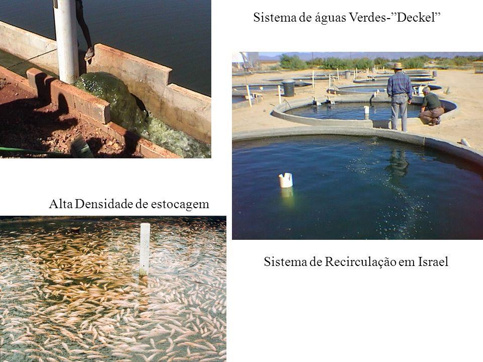 Sistema de águas Verdes- Deckel