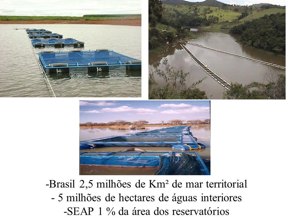-Brasil 2,5 milhões de Km² de mar territorial - 5 milhões de hectares de águas interiores -SEAP 1 % da área dos reservatórios