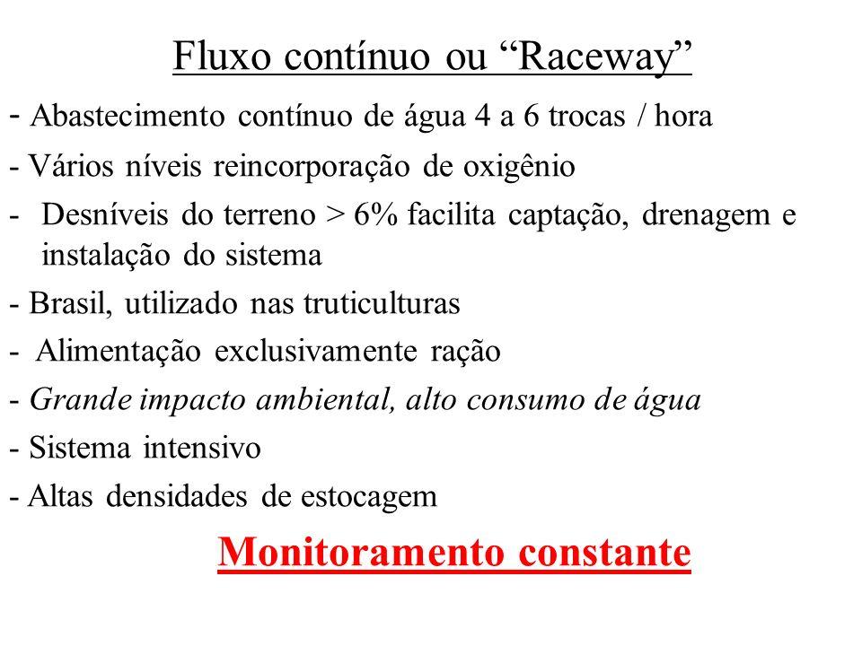 Fluxo contínuo ou Raceway