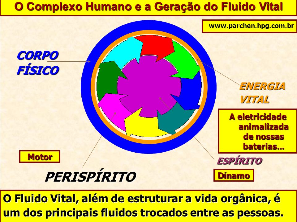 PERISPÍRITO O Complexo Humano e a Geração do Fluido Vital CORPO FÍSICO