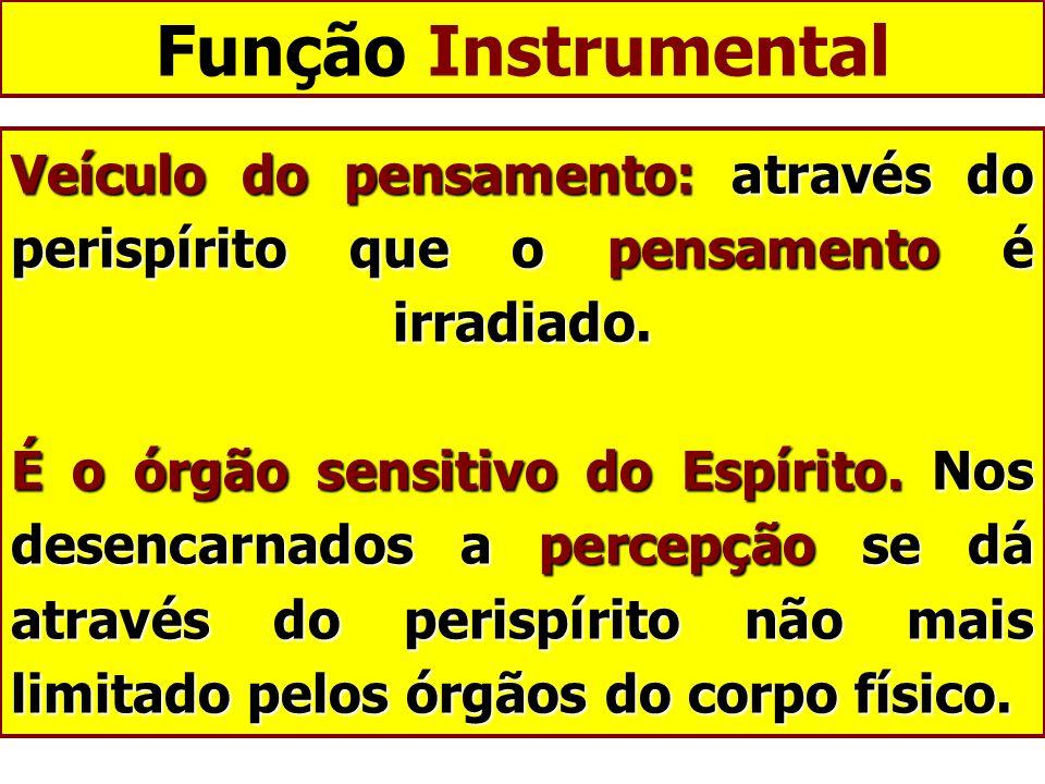 Função Instrumental
