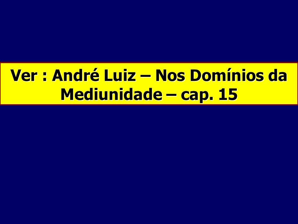 Ver : André Luiz – Nos Domínios da Mediunidade – cap. 15