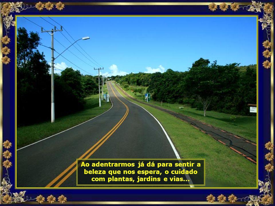= IMG_3407 - COSTA DO Sauípe - CHEGADA E ACESSO-690.jpg